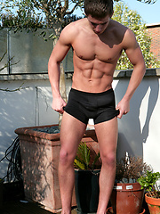 Hung stud Dane posig outdoors