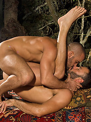 Hot gay porn stars Wilfried Knight and Damien Crosse fuck