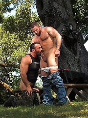Muscle bears Shay Michaels and Brad Kalvo fucking