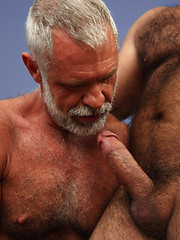 Old bears Allen Silver and Rocky LaBarre fucking