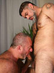 Bears Jessie Foxx and Mike sucking each other cocks